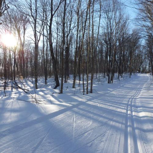 Sentier de ski