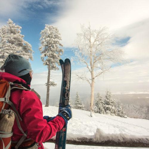 Skieur et paysage
